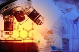 海正药业:青蒿素原料研发已完成中试 具体投产时间待定