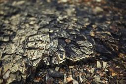 期市日间盘收盘铁矿石涨逾3%