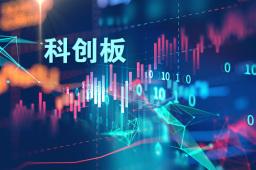 上交所:科创板股票暂不作为股票质押回购及约定购回交易标的证券