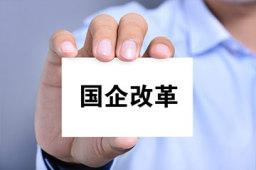 """""""双百九条""""剑指国企改革共性难题"""