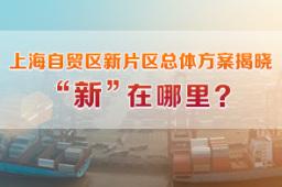 【上海自贸区新片区】新一轮改革开启