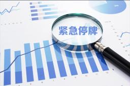 *ST华信:股价已连续20个交易日低于面值 19日起停牌