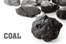 中国煤炭工业协会官员呼吁:加强煤炭期货市场品种建设