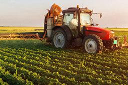 江西高标准农田约占全省耕地面积一半