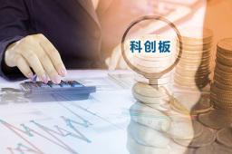 科创板IPO上会首现暂缓审议