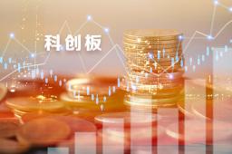 前11月險資投資科創板賬面余額14.94億元