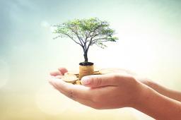 财政部等六部门:引导金融机构增加3000亿元低息贷款 定向支持个体工商户