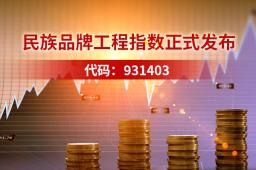 民族品牌工程指数正式发布:代码931403